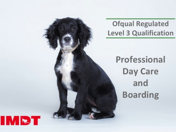 Ofqual Regulated Level 3 Professional Day Care and Boarding