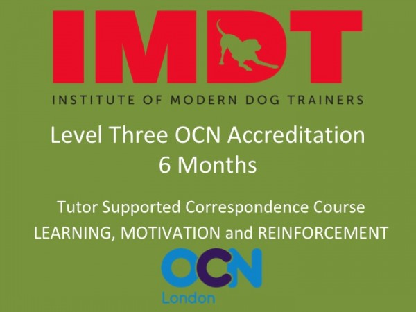 LEVEL THREE 6 Months. Learning, Motivation and Reinforcement